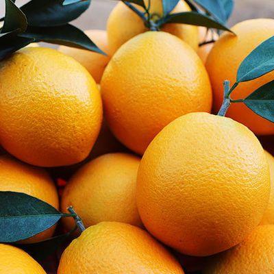 【官方旗舰店】高山脐橙新鲜赣南橙子应季时令孕妇水果一整箱甜橙
