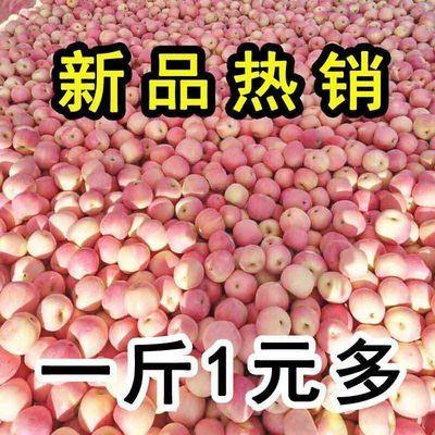 陕西红富士苹果10/5/3斤当季新鲜苹果脆甜平果孕妇水果不打蜡批发