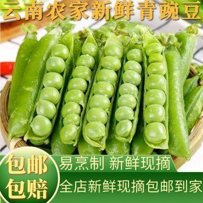 新鲜豌豆甜豌豆宝宝辅食甜豆青豌豆清香味醇现采直发包邮坏单包赔