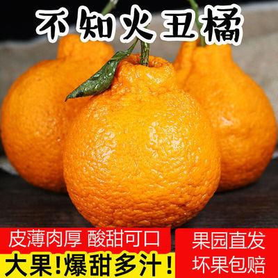 https://t00img.yangkeduo.com/goods/images/2020-10-11/b91654066d6cc909a03a150431f23096.jpeg