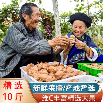 https://t00img.yangkeduo.com/goods/images/2020-10-12/1ffea62e02641fd40a2fab94b4a4451a.jpeg