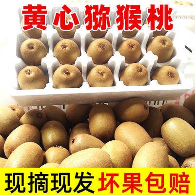 黄心猕猴桃四川泥猴桃当季新鲜水果季节性奇异果整箱批发包邮