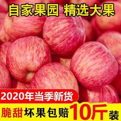 【不打蜡】陕西红富士苹果水果新鲜脆甜现摘冰糖心3/5/10斤整箱