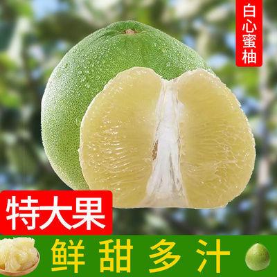 云南普洱蜜柚新鲜水果香甜白心青柚子江城东时早柚子产地直发包邮