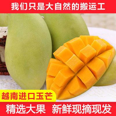 越南进口玉芒青芒果甜心芒果当季新鲜水果3/5/10斤装 请催熟食用