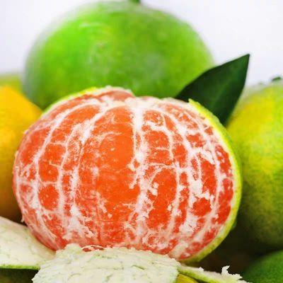当季早熟薄皮新鲜橘子桔子桔柑橘青皮蜜桔应季孕妇水果 整箱批发