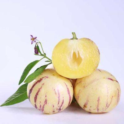 【熟果黄肉】云南特产石林人参果新鲜应季水果水嫩圆果现摘现发