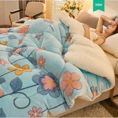 双面加厚绒羊羔绒法莱绒冬被床垫单双人学生宿舍保暖被芯床垫8斤