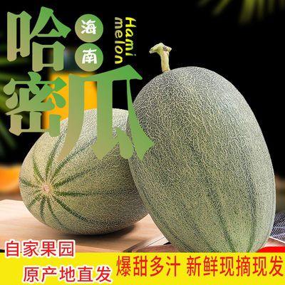 海南哈密瓜新鲜水果应季批发爆甜皮薄香瓜网纹瓜玫珑瓜一箱非新疆
