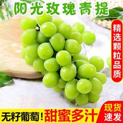 2斤有机阳光玫瑰日本无籽青提新鲜提子晴王香印应季水果葡萄整箱5