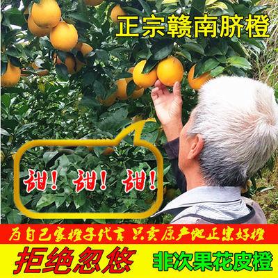 【产地直发】正宗新鲜应季橙子脐橙江西赣州赣南脐橙3/10斤水果