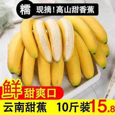 云南新鲜青香蕉现摘现发生香蕉整箱热带水果农家无催熟剂10斤包邮