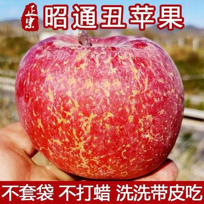 78948/正宗昭邵通丑苹果3-10斤当季新鲜水果冰糖心红富士脆甜整箱批发