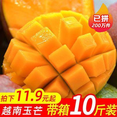 现摘当季越南进口青玉芒果大青芒热带新鲜水果3/5/10斤装整箱批发【10月31日发完】