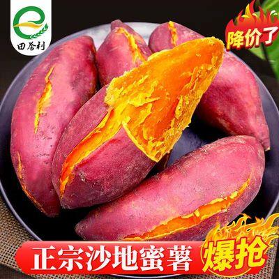 【软香绵甜】地瓜红薯番薯10斤2斤现挖沙地板栗红薯新鲜红蜜薯