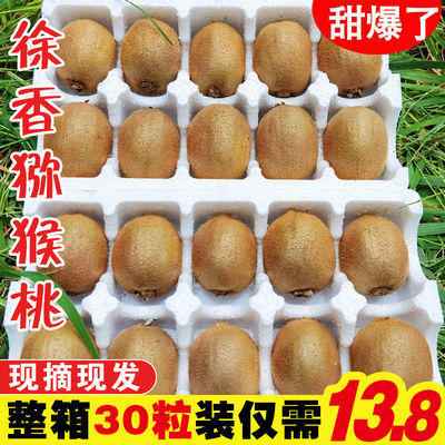 https://t00img.yangkeduo.com/goods/images/2020-10-22/de718f4e1ec95112b72a3caf3cdabb8b.jpeg