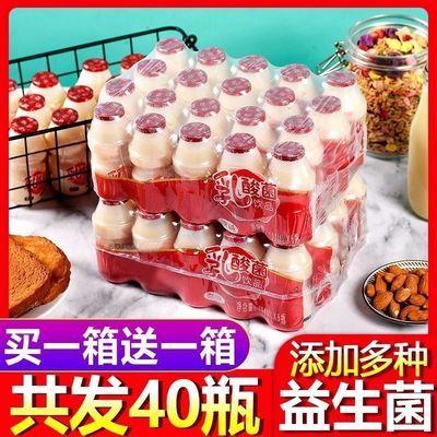 【买20发40】10瓶乳酸菌饮料酸奶牛奶饮品儿童学生早餐奶整箱批发