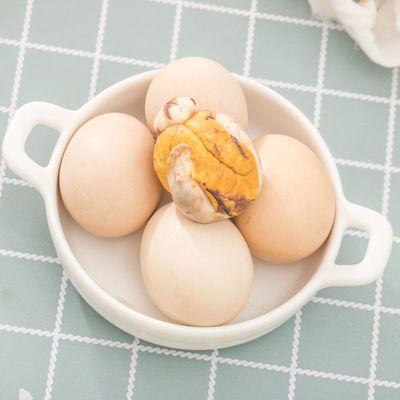活珠子13天鸡坯蛋熟鸡蛋土鸡蛋喜蛋原味钢化蛋非毛鸡蛋