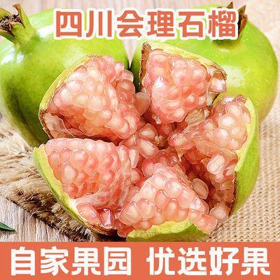 【现摘现发】四川会理硬籽粉籽甜石榴新鲜超甜