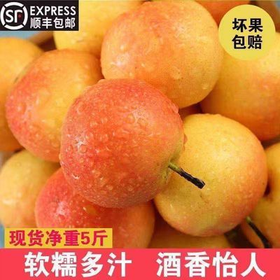 https://t00img.yangkeduo.com/goods/images/2020-10-25/9f1d13dee3158e59e06eae53c04c67b2.jpeg
