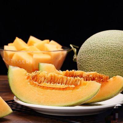 【爆甜蜜瓜】海南哈密瓜晓蜜瓜西州密玫珑瓜网纹瓜当季新鲜水果