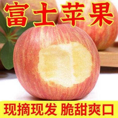 苹果红富士脆甜新鲜水果应季批发冰糖心10斤装非烟台陕西青苹果