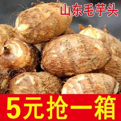 山东毛芋头香芋软糯新鲜牛奶小芋头农家自种芋艿芋仔非荔浦糯芋头