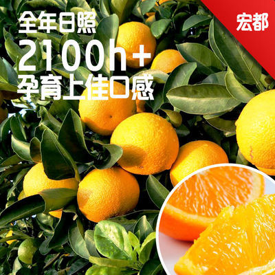 宏都 甜橘柚应季赣州脐橙现摘现发新鲜孕妇儿童可食橘柚果园直发