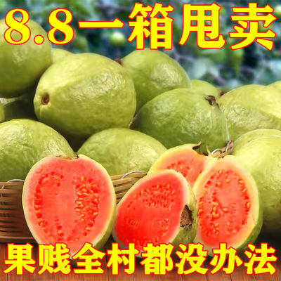 番石榴红心芭乐广西胭脂红肉清脆珍珠白心芭乐果新鲜现摘当季水果