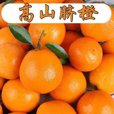 高山脐橙 新鲜橙子手剥甜橙应季新鲜水果甜橙子现摘四川赣南脐橙