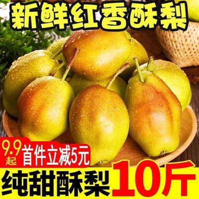 新鲜正宗脆甜多汁红香酥梨5/10斤当季水果批发非库尔勒皇冠香梨子