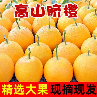 四川高山脐橙金堂橙子大果冰糖橙新鲜孕妇水果应季时令水果包邮