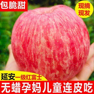 【现货直发】正宗陕西延安洛川红富士苹果整箱10斤新鲜水果脆甜