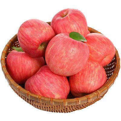 陕西农家富士苹果现摘现货新鲜水果孕妇水果带箱10斤【坏果包赔】