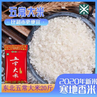 五常大米东北大米20斤珍珠米稻花香2020年新米厂家直发