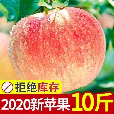 陕西红富士苹果2/10斤新鲜当季正箱水果批发冰糖心小苹果整箱正宗