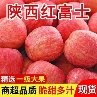 陕西苹果红富士脆甜多汁不打蜡水果新鲜当季现摘10/5/3斤整箱批发