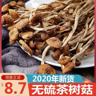 馋嘴耳 古田茶树菇新货无硫冰菇食用菌开伞茶树菇不开伞茶树菇