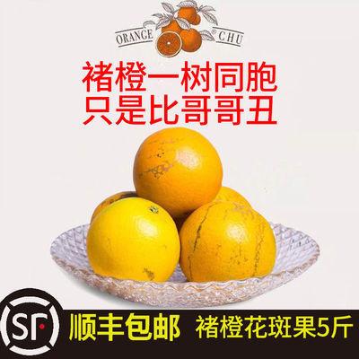 【顺丰包邮】褚橙花斑果5斤超大花斑果果径78mm巨无霸 褚橙正品