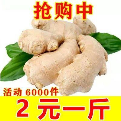 山东大姜生姜老姜姜母新鲜老姜月子姜姜仔黄姜2斤5斤10斤包邮