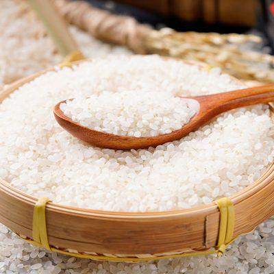 东北大米防虫小袋大米2020年新米珍珠米稻花香