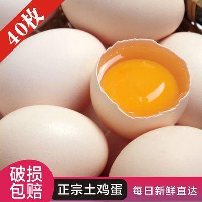 新鲜土鸡蛋绿壳蛋正宗农家散养柴鸡蛋山林草鸡蛋笨鸡蛋乌鸡绿壳蛋