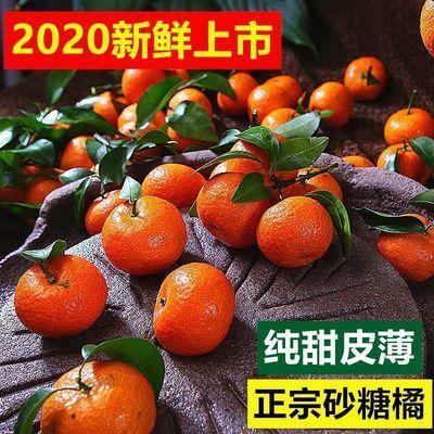【现摘】广西沙糖桔早熟砂糖橘甜桔新鲜当季应季时令水果多仓发货