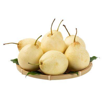 陕西酥梨砀山梨5斤整箱批发包邮