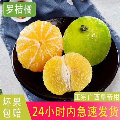 【精品】现摘广西武鸣皇帝柑新鲜水果当季柑橘皮薄桔子包邮5-10斤