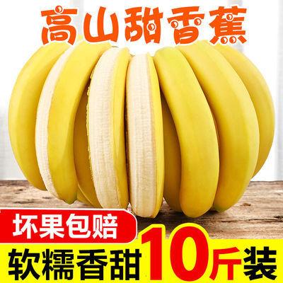 高山香甜大香蕉新鮮當季時令水果非廣西小米蘋果蕉芭蕉應季10/6斤