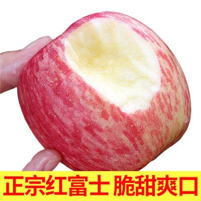红富士苹果当季山东新鲜现摘脆甜水果整箱包邮丑苹果3/5/10斤