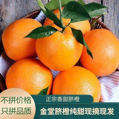 四川高原金堂脐橙3/5/9斤手剥纽荷橙当季新鲜现摘现发孕妇水果甜