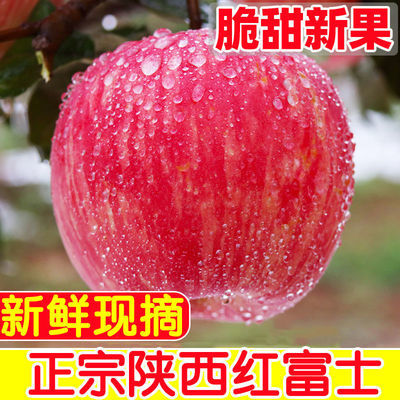 红富士苹果水果新鲜当季整箱陕西红苹果应季冰糖心苹果丑苹果包邮