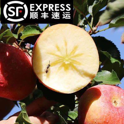 正宗新疆阿克苏冰糖心丑苹果红富士脆甜新鲜应季水果整箱顺丰包邮
